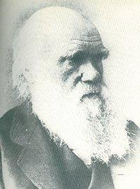 Bild på Darwin